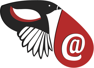 Email Magpie | Email Finder for your Business Leads